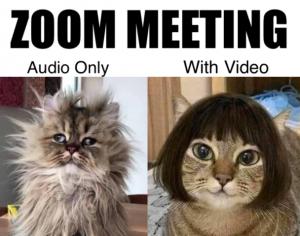 Zoom-meeting-audio-vs-video-meme-608x479